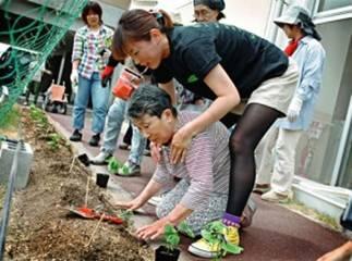 ▲香川医療生協のゴーヤの植え付けの様子